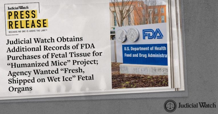 Judicial Watch: FDA Purchases of Fetal Tissue for 'Humanized Mice' Project;